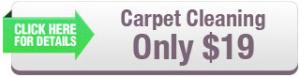 carpet1-300x77